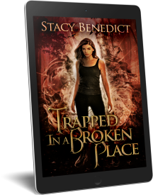 Trapped-In-A-Broken-Place-Promo-Ereader